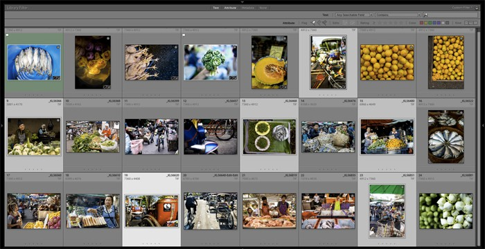 A library of photos in Lightroom catalogue